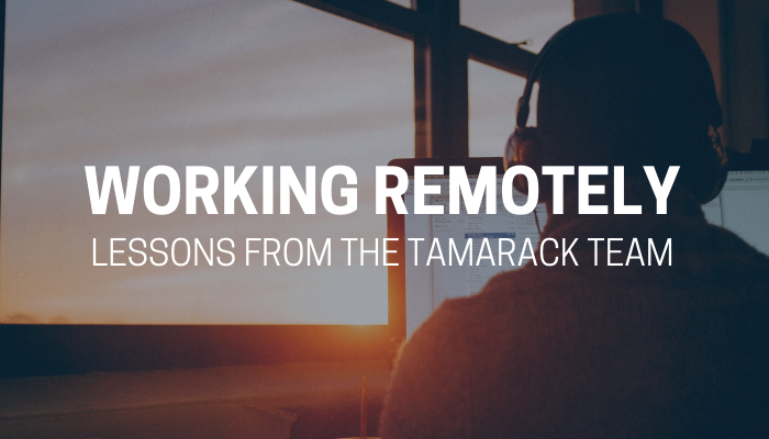 Copy of 2020 Webinar Working Remotely (2)