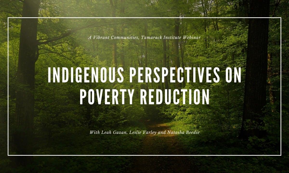 Indigenous Perspectives Webinar