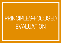 Principles Focused Evaluation Banner