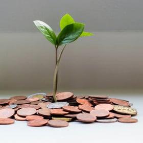 Financial stability-1