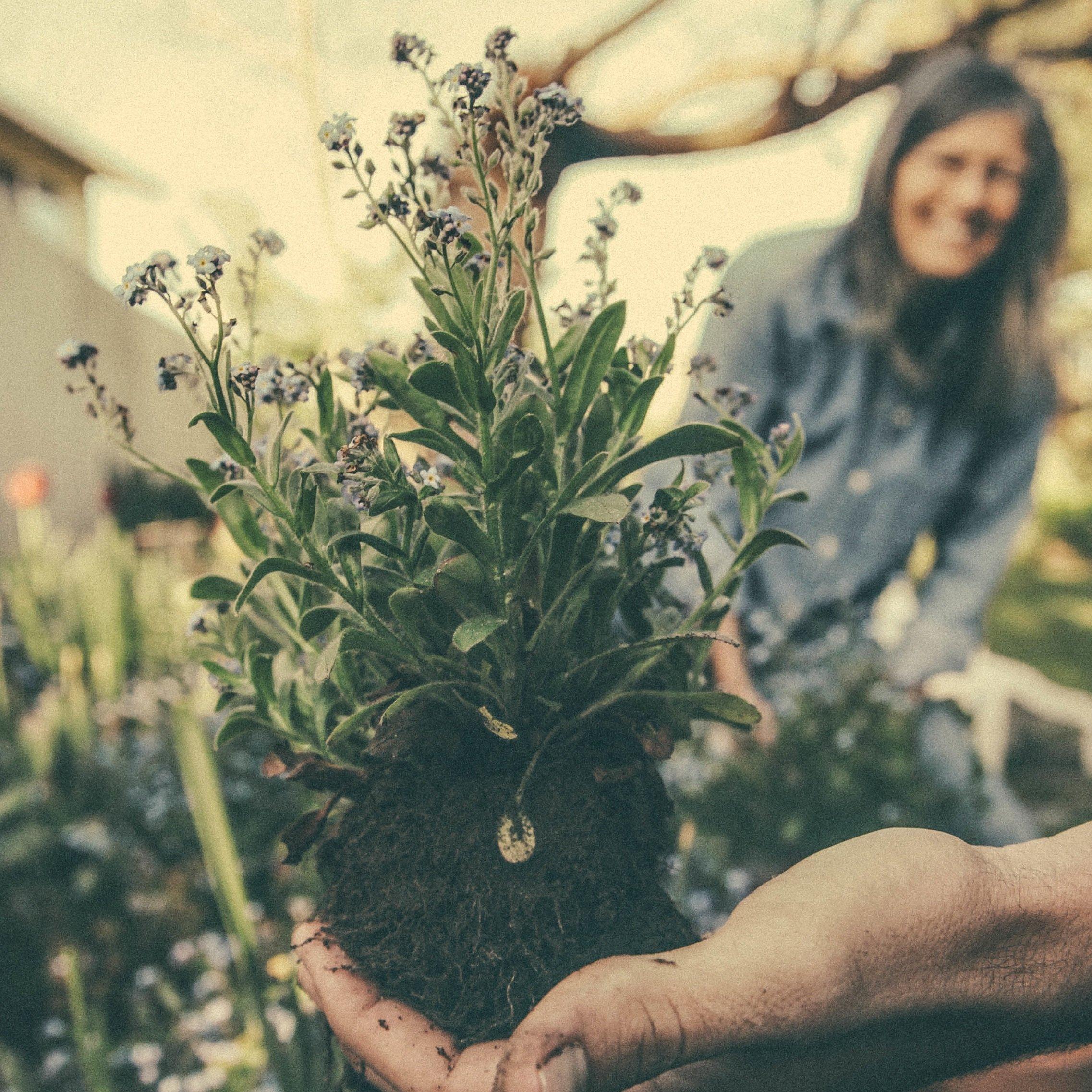 Gardening Hand Square (1)