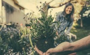 Gardening Hand