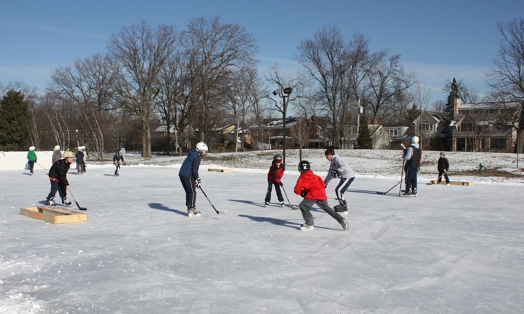 Outdoor hockey 5 3.jpg