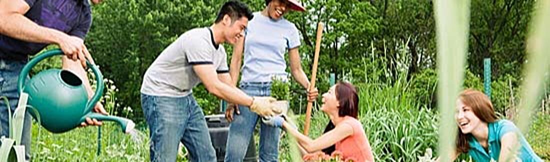 neighbors-working-together-community-garden-social-benefits1