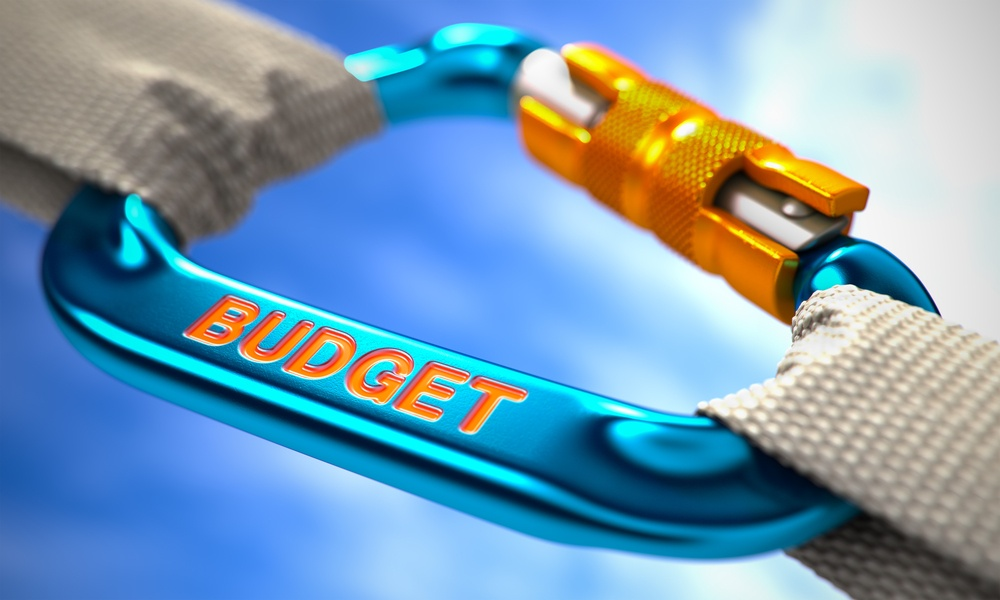 Strong Connection between Blue Carabiner and Two White Ropes Symbolizing the Budget. Selective Focus..jpeg