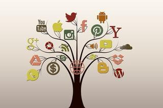 Social_Media_Tree.png
