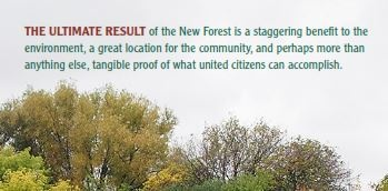 new forest cover quote.jpg