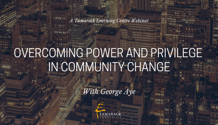 2019 Webinar Overcoming Power and Privilege in Community Change