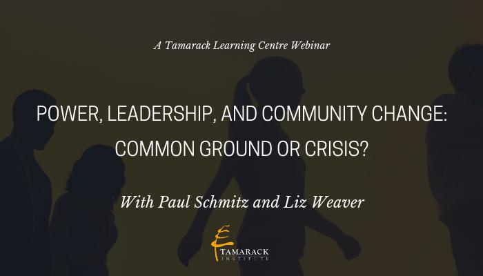 2019 Webinar Power, Leadership, and Community Change
