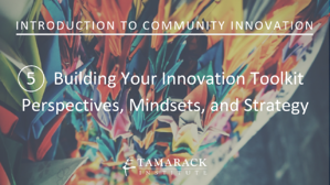 2019 Introduction to Community innovation Lesson 5