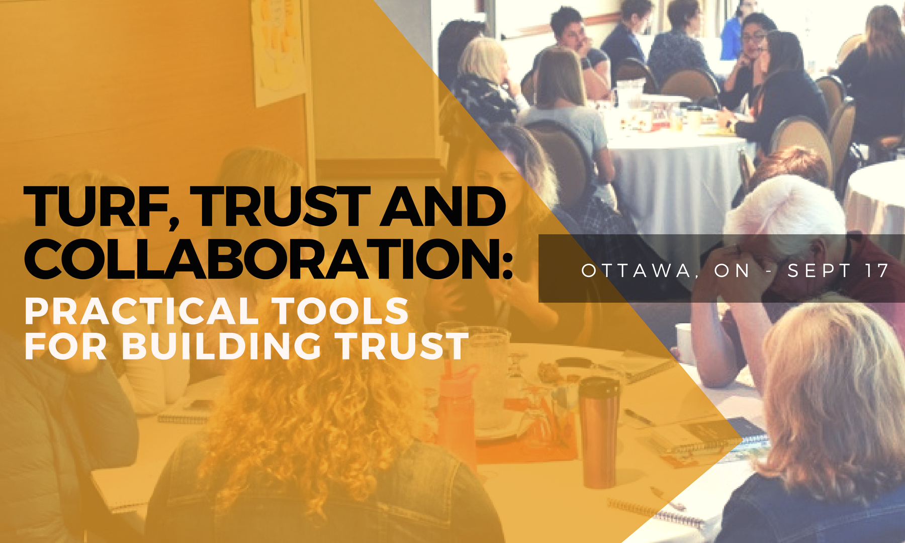 Turf, Trust, and Collaboration