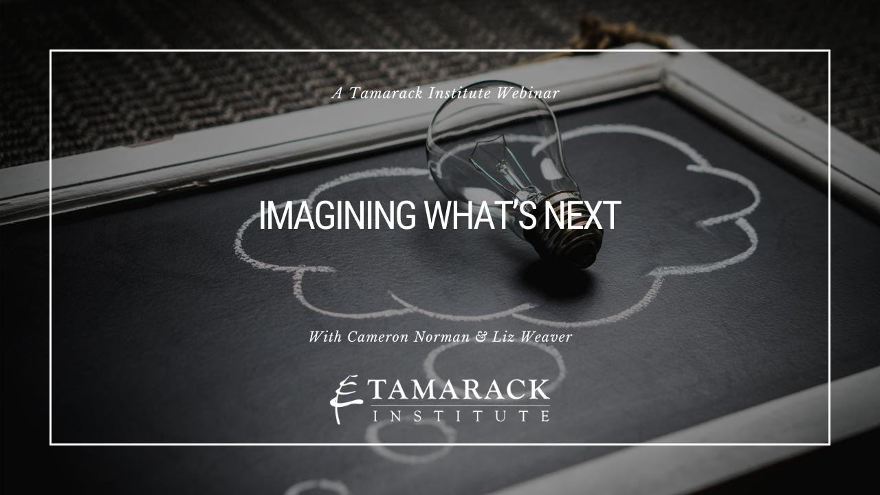 Imaging Whats Next webinar Feature text.-1