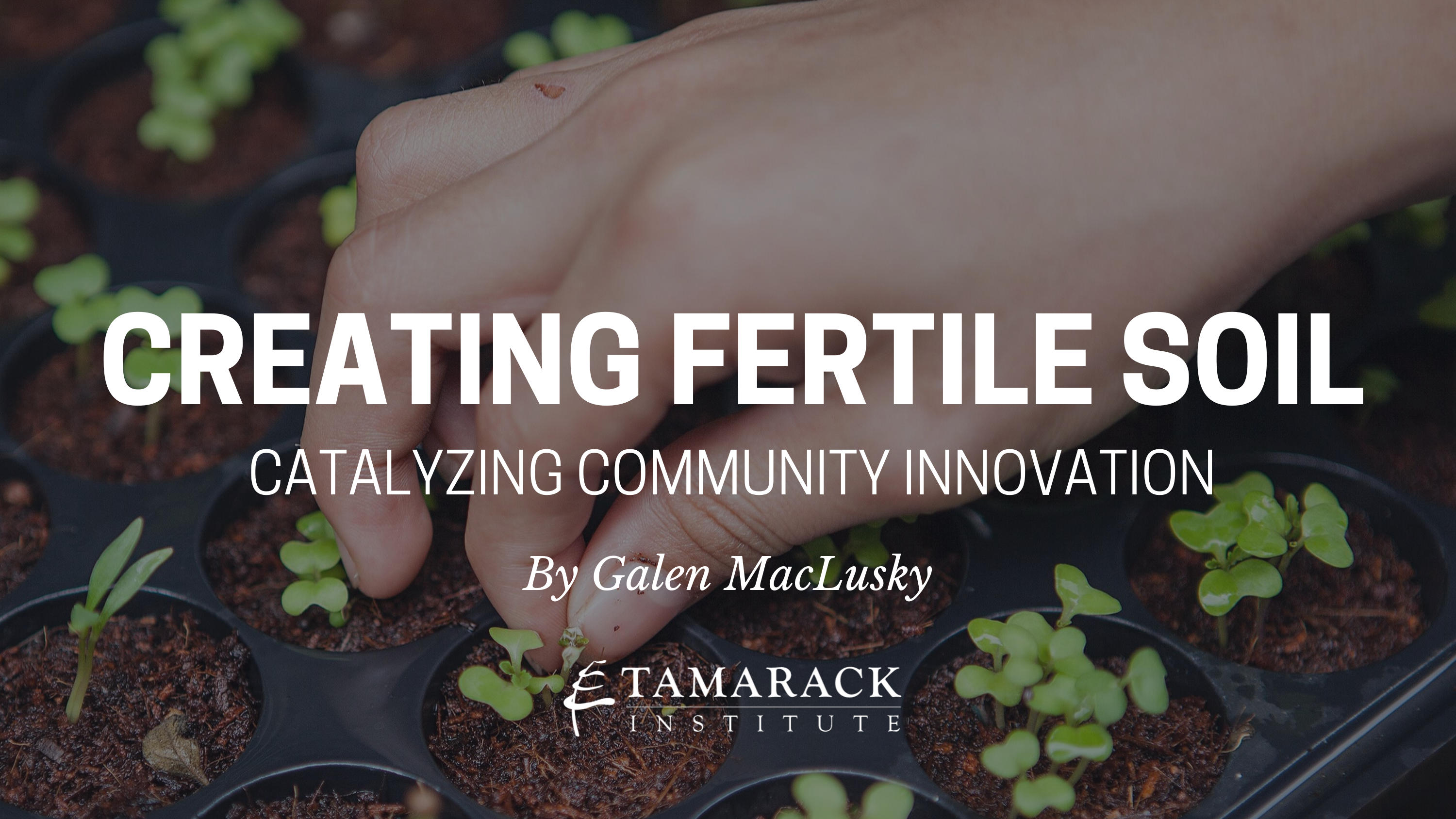 Creating Fertile Soil