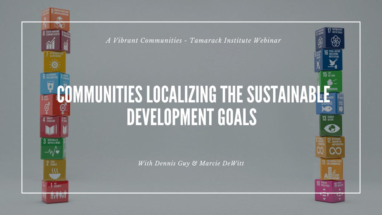 SDGs Webinar